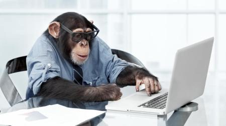este-trabajo-lo-podria-hacer-un-mono-y-pagan-una-pasta
